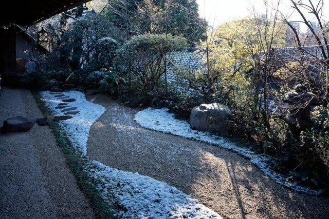 撮影限定 1万坪の日本庭園を贅沢に貸切って本格撮影 の写真
