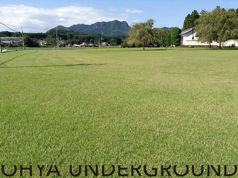 1,800坪の大芝生!大運動会、ヨガ、フェスなど各種イベントに。