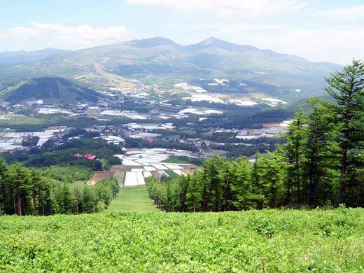【グリーンシーズン】夏の菅平 大自然を貸し切ってキャンプやフェスなどが開催できます *2017年7月以降の先行予約!(菅平高原ハーレスキーリゾート) の写真0