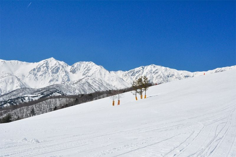 【ウィンターシーズン】白馬岩岳スノーフィールドのコースを貸切! / イベント 撮影 プロモーションも可 *平日限定(白馬岩岳スノーフィールド) の写真0