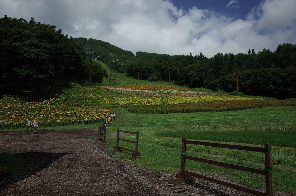 【グリーンシーズン】スキー場の山頂でヨガ・キャンプ・BBQ・天空観察しよう! の写真