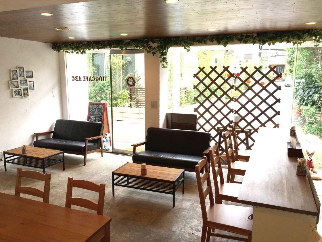 下北沢 新代田 ペットOK 一面のガラス窓で日差しが暖かいドッグカフェ Dog Cafe ABC(Dog Cafe ABC) の写真0