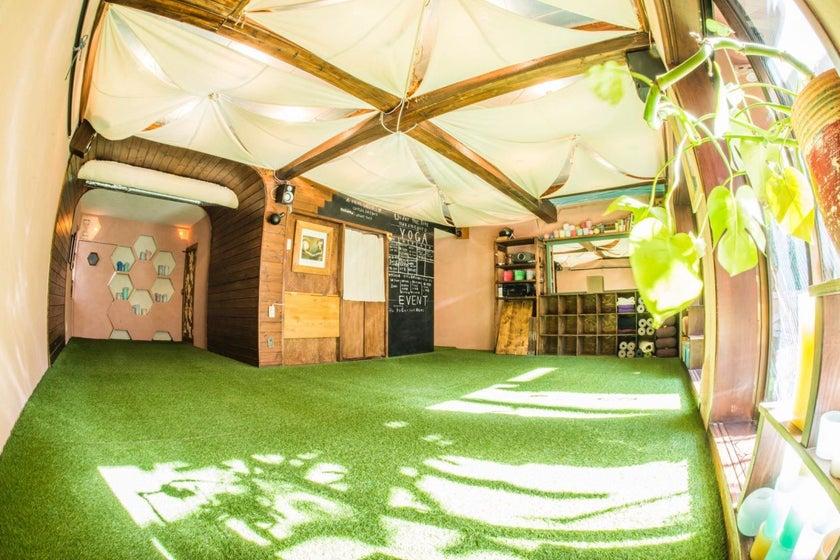 🎄CM放送中スペース🎄中目黒駅徒歩7分 入った瞬間、異空間!自然を感じるキッチン付のレンタルスペース(Under the Tree nakameguro 中目黒駅から徒歩7分) の写真0