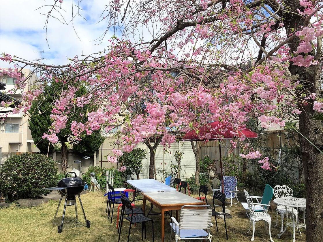 広々とした庭でバーベキュー+リノベーションを施したリビングダイニング(OPでキッチン使用可でもおくつろぎいただけるパッケージ(咲くらるーむ 横浜) の写真0