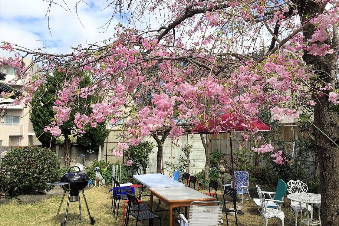 庭でのバーベキュー+リノベーションを施したリビングダイニング(OPでキッチン使用可でもおくつろぎいただけるパッケージ の写真