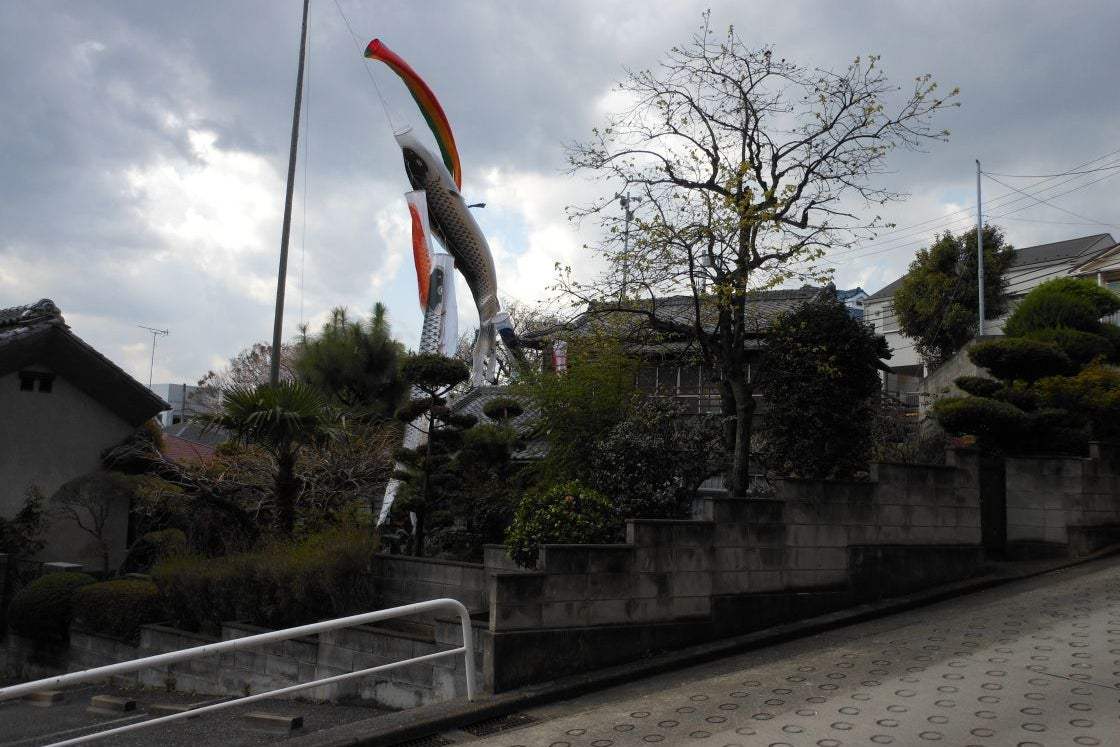 若木の家【築65年の昭和レトロな古民家です】 の写真