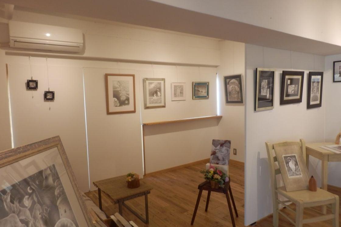 【渋谷徒歩6分】ギャラリー、展示会、教室、会議に最適 明るく静かな安らぎの空間 ZAB 全体貸し の写真