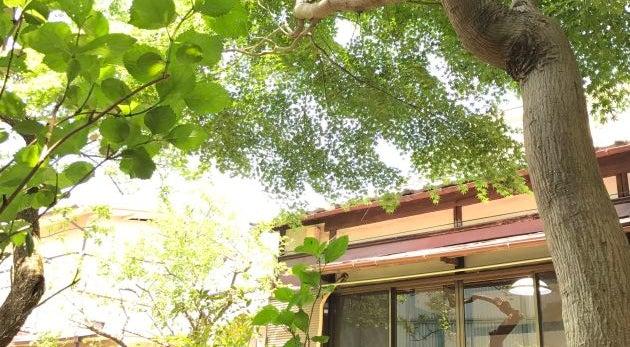 【中野/阿佐ヶ谷】1日1組限定!昭和レトロな趣を残す築61年の古民家を貸し切ろう!