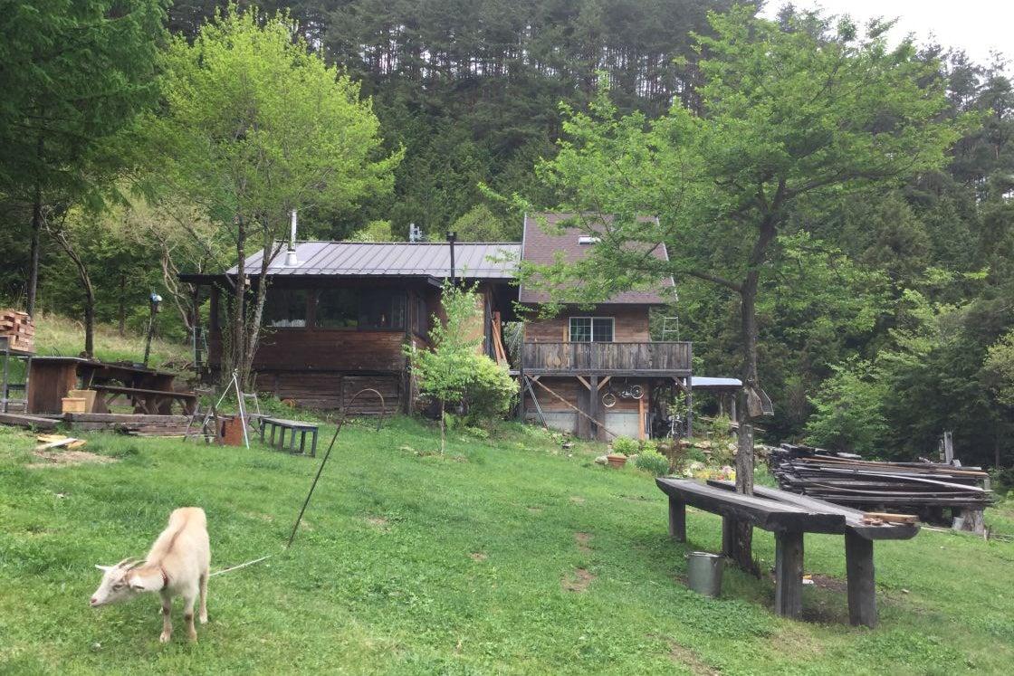 標高1,000メートル、森の中の小さな山小屋mokki の写真