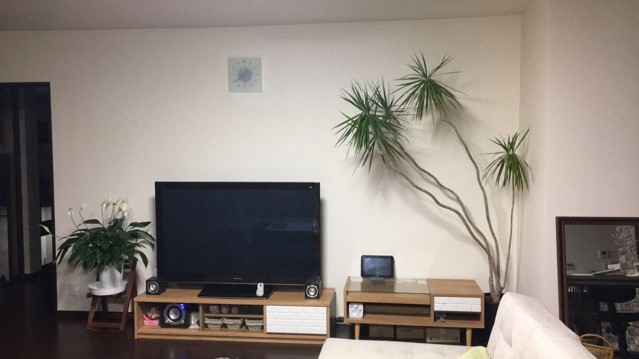 大画面のテレビは54インチ!プライム動画も観れます。オプション1000円/日