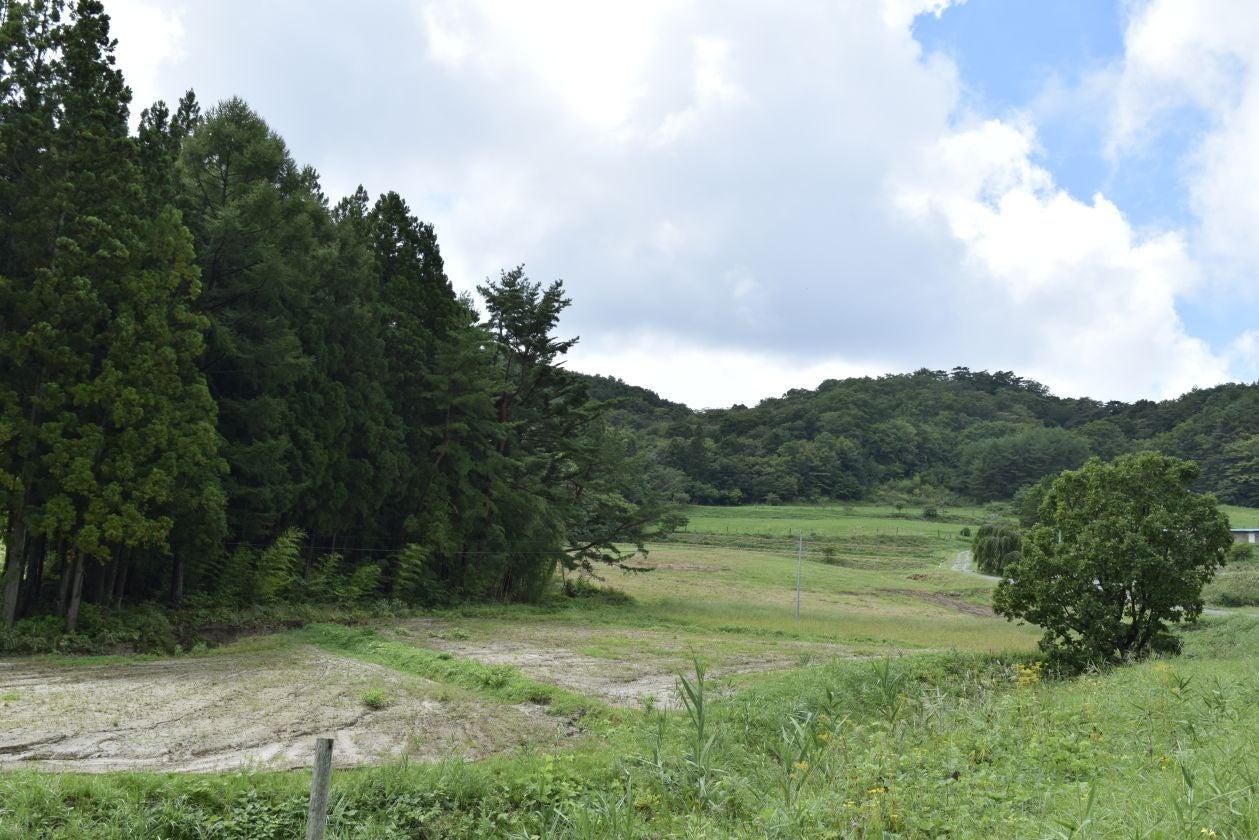 かつらおベンチャーリゾート FLICAZAILA の写真
