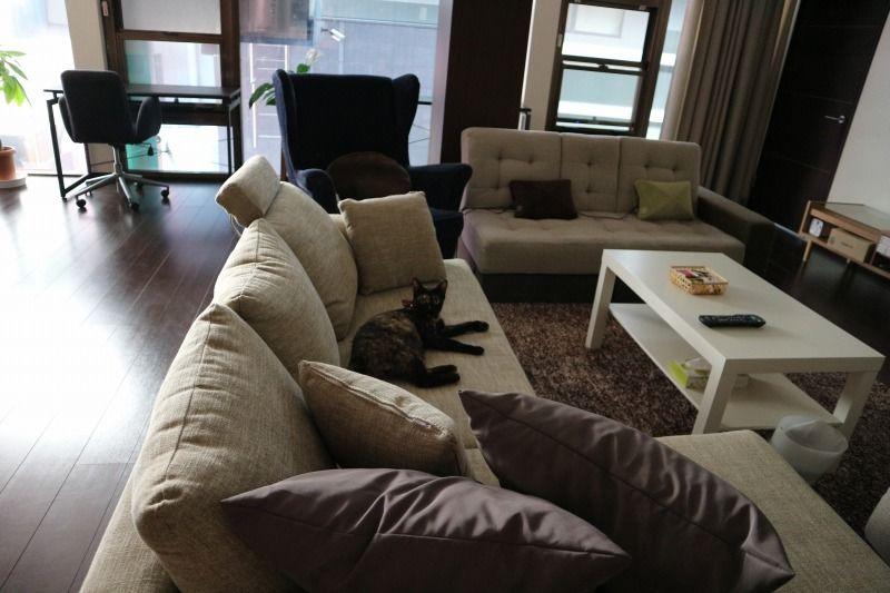 ソファーでゆったりくつろいで会話もできます。 こちらのカーペットを汚さないようにお願いします。ジュースや食べ物をこぼしますとクリーニングとさせていただきます。