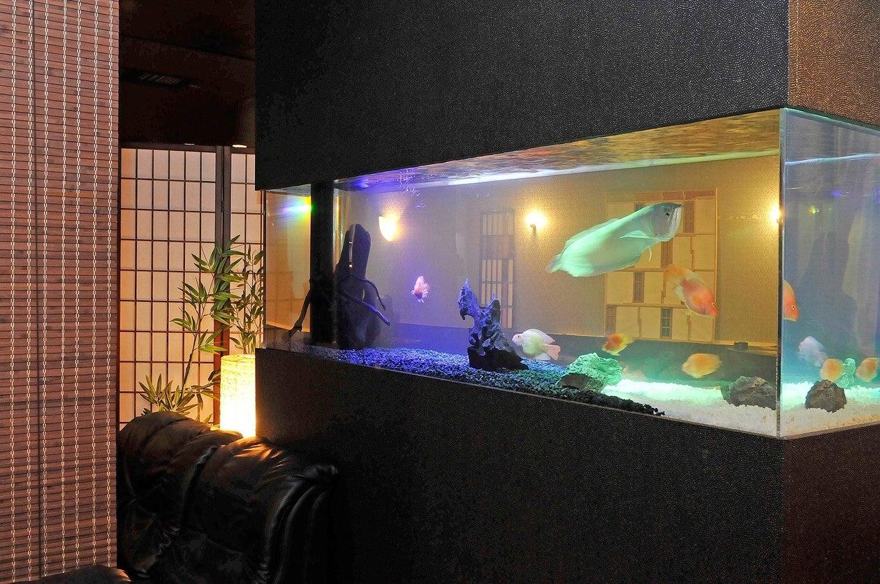 麦のとき至 リバティー新横浜ビル 4階(麦のとき至 リバティー新横浜ビル 4階) の写真0