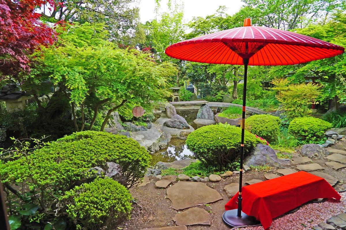 ※見学、ロケハン予約専用【日本庭園と古民家】飯田屋【都心から20分、竹林を抜けると別世界。四季折々の花々がお迎え✨撮影✨コスプレ の写真