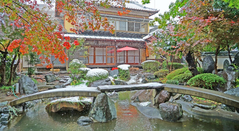 横浜【日本庭園と古民家】飯田屋〜iidayajapan〜東京から20分、竹林を抜けると別世界。四季折々の花々がお迎え致します〜