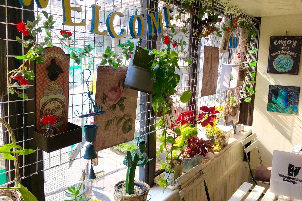 大森SEIYU側の隠れ家的カフェ風フリースペース、ウッドペッカーラウンジ!パーティ、イベント、ワークショップ何でもOK❕❕ の写真