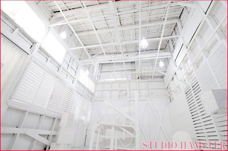 スタジオハムスター5匹目! コスプレ撮影、アーティスト撮影、ドール撮影などに♪ 商業利用も可能! の写真