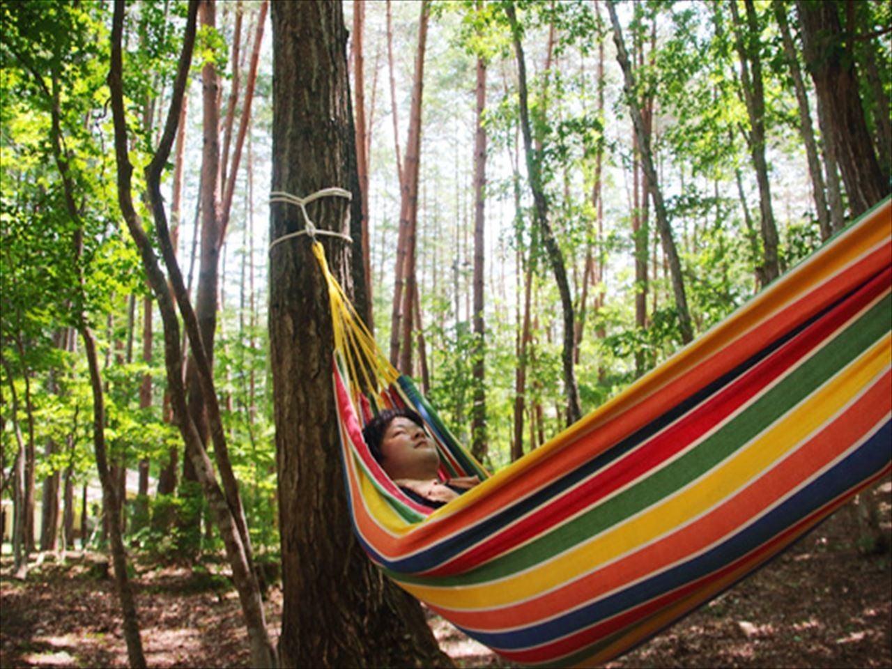 森の中の貸切合宿施設Cloud Camp のサムネイル