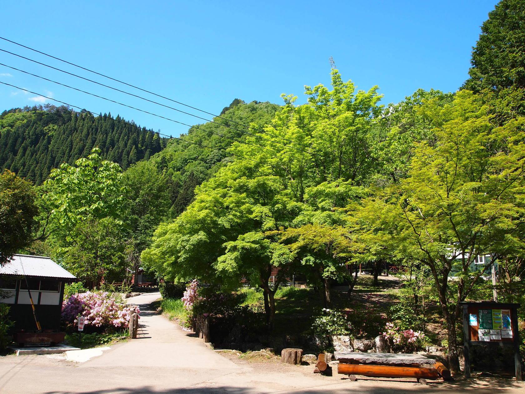 キャンプ場の広場や景色など(宿泊施設を除く広場・施設の貸出) の写真