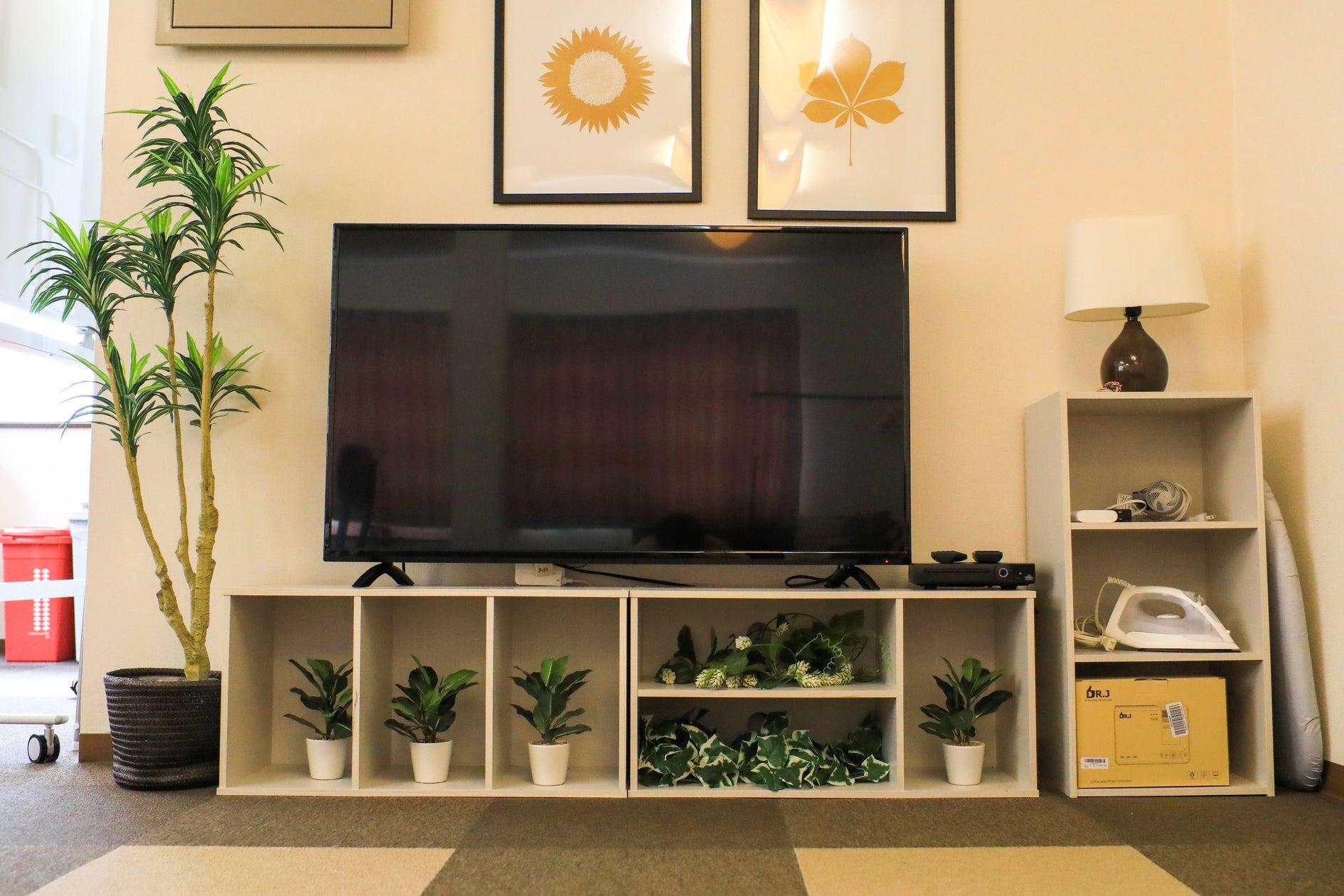 大画面50V型TV