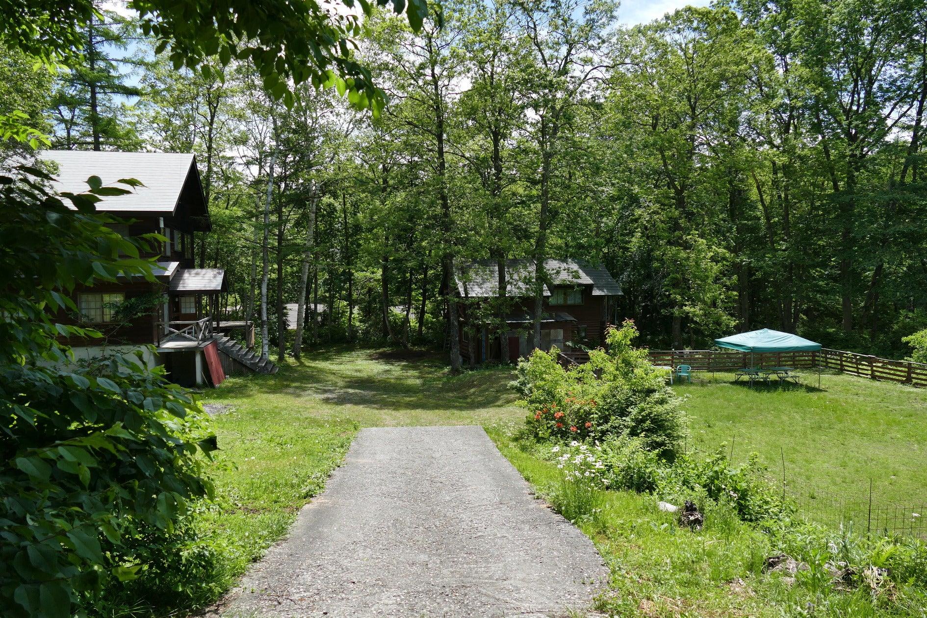 森に囲まれたペンション の写真