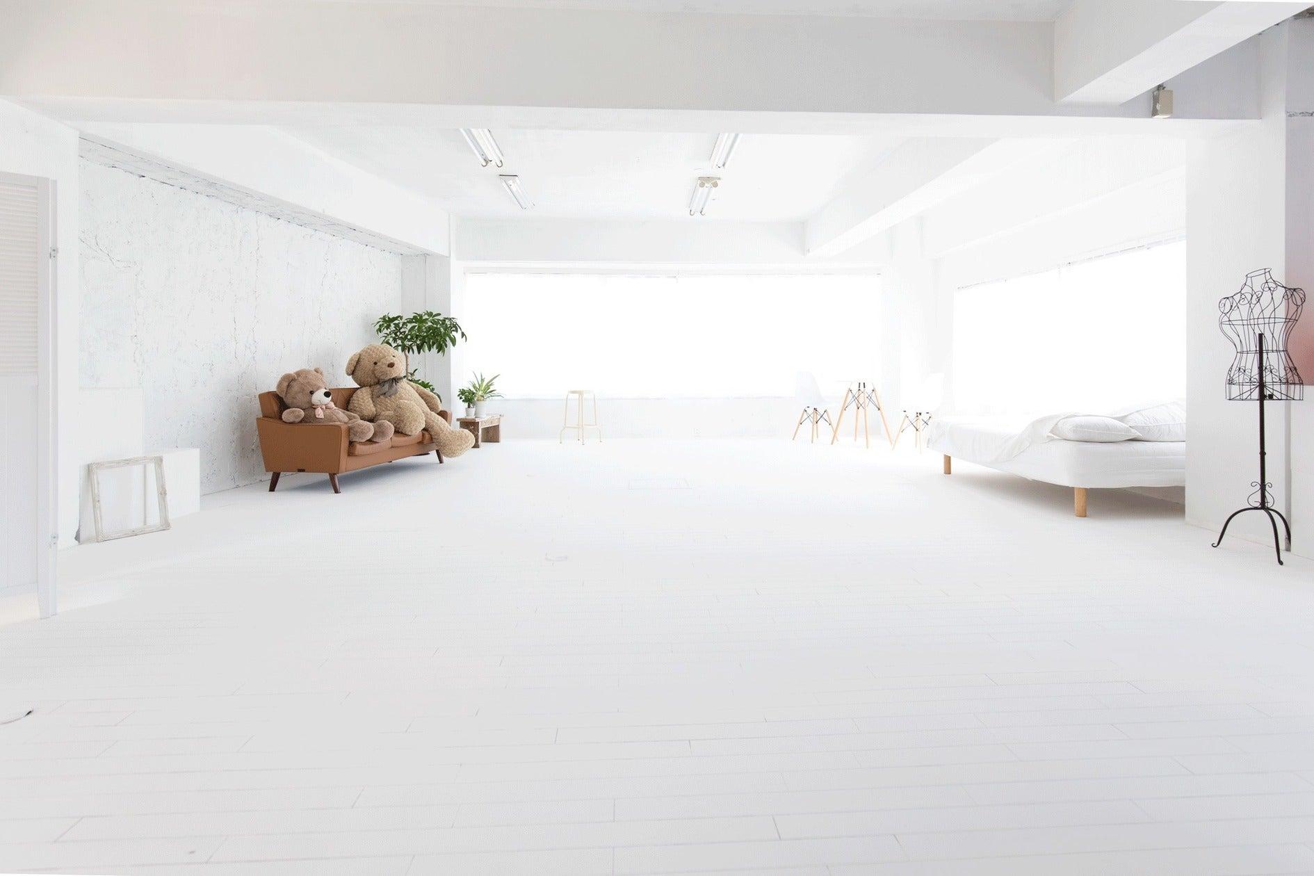 手塗りの白壁白床。柔らかな自然光で一日キレイに撮影できる早稲田のレンタルスタジオ