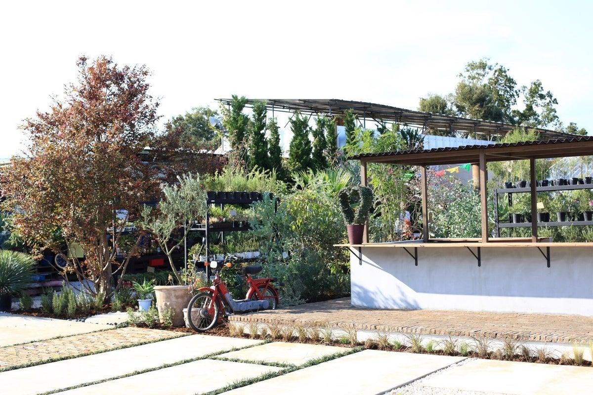 所沢 撮影やBBQやパーティーを希少植物に囲まれた異空間で!100人収容可能です! の写真