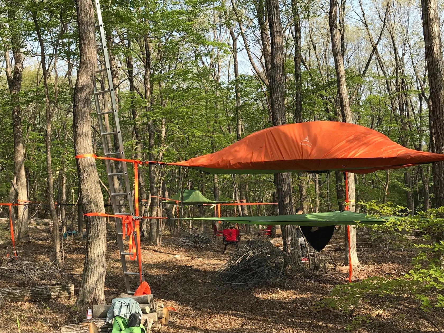 自然が溢れる森を撮影にバーベキューにソロキャンプにお使い下さい! の写真