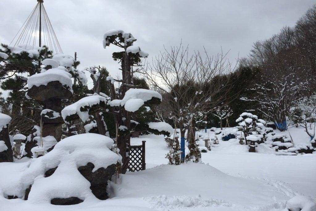 約1200坪の日本庭園付を1棟貸し♪ の写真