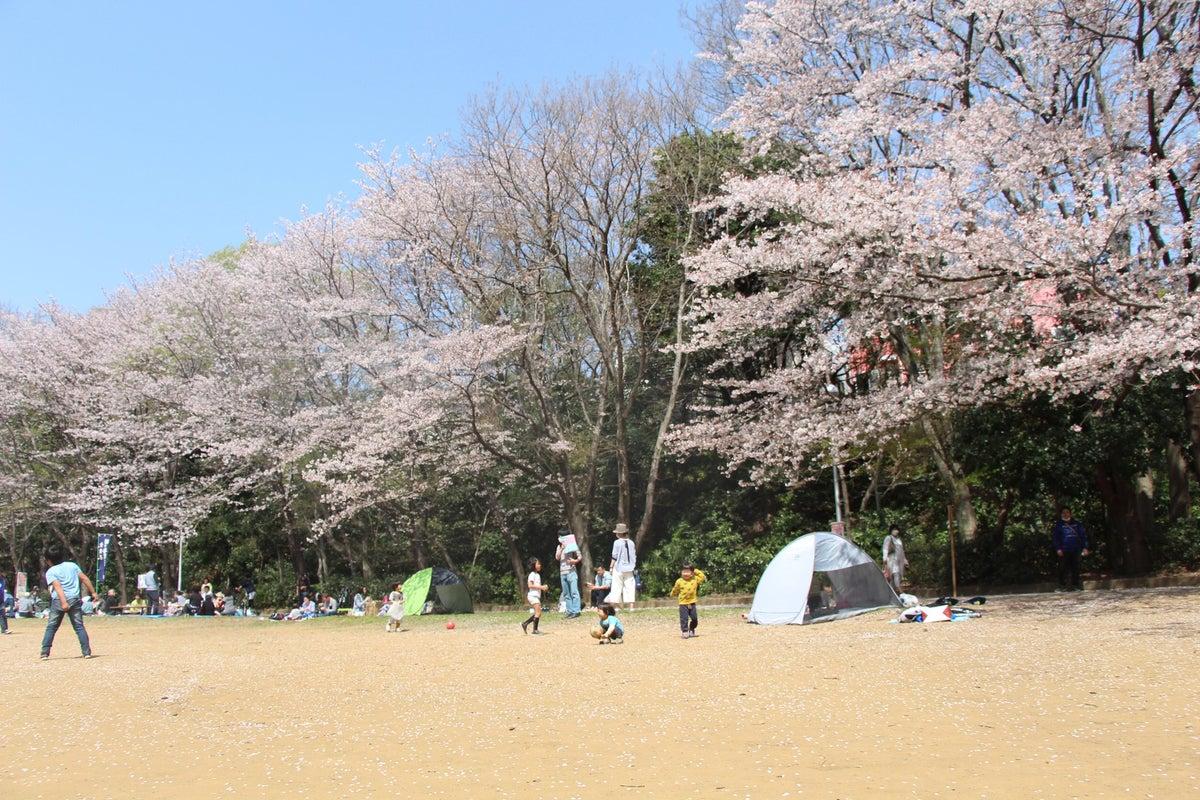 新京成線北初富駅から徒歩3分。駅近、周辺施設充実、緑豊かな大きな公園の真横!無料備品たくさんです! の写真