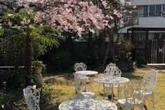 バーベキューやイベントに広い庭をご活用ください(オプションでキッチ・BBQセットの貸し出しもあります) の写真