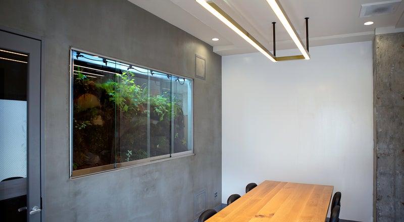 【表参道駅B1出口から徒歩3分、渋谷徒歩圏内】植物に癒されるパルダリウム隣接の個室会議室!