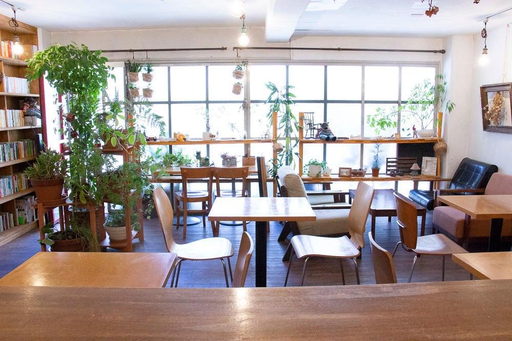 magari~カフェスタジオ~壁一面に本棚のある調理・飲食が可能な撮影スタジオ の写真
