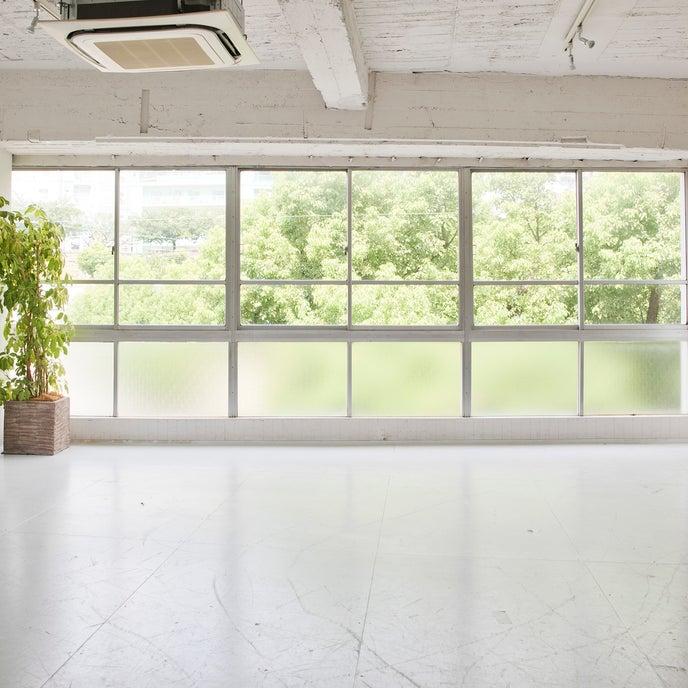北向きの全面窓から入る自然光が人気です。