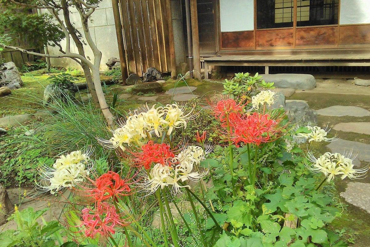 駅近の古民家です。市川駅から徒歩5分。離れ座敷や苔の庭を含め100年以上経過しております。 の写真