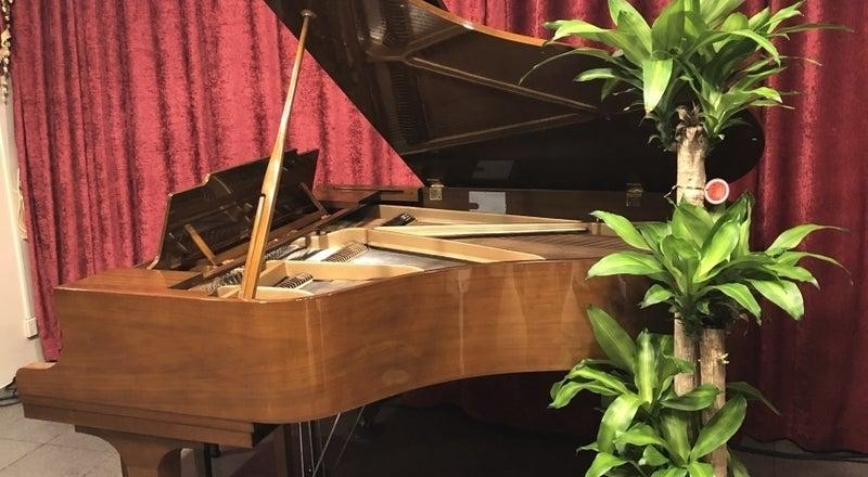 グランドピアノ・PA完備!100名程度のコンサート・イベント・会議・各種企画などに