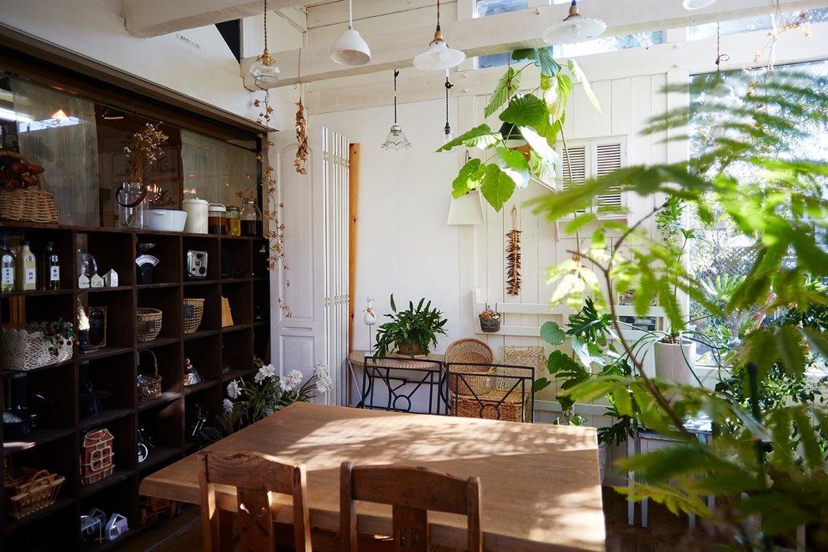 女子会大歓迎!自然光たっぷりのカフェのような空間!商品撮影利用も可! の写真