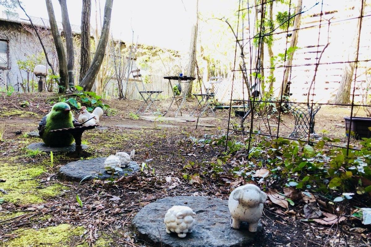 庭 の写真