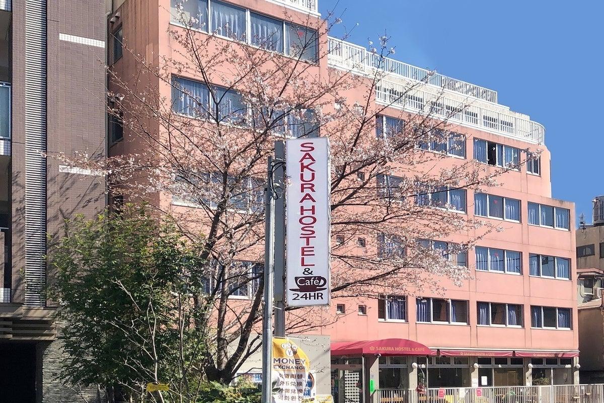 サクラホステル浅草1階共用スペース (サクラカフェ浅草) の写真