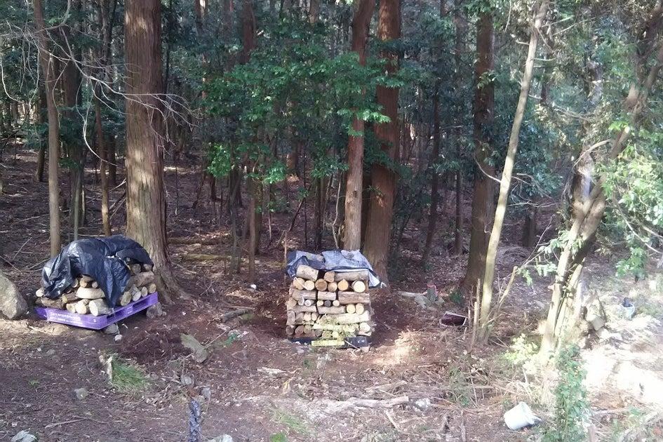 森のコテージ 魔女の宅急便のウルスラのアトリエ風 の写真