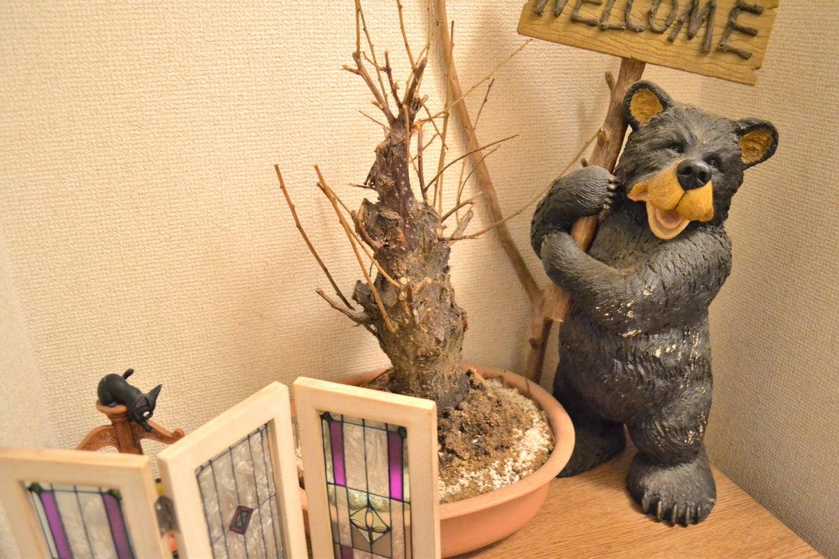 【シモキタハウス】🟩ゴロゴロできるゆったり3LDKリラックス空間/毎日清掃🌟/高速Wi-Fi/~12名最適/24h の写真
