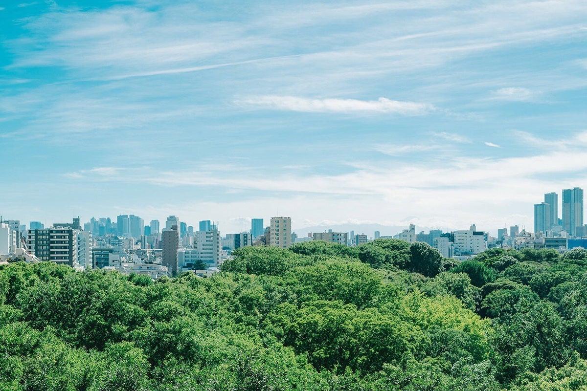 都内屈指の絶景ルーフトップ!六義園の森に浮かぶ高層ビル街が一望できます。 の写真