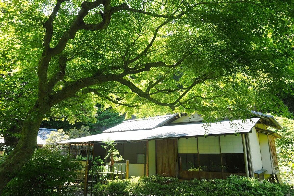【鎌倉】本格茶室スペース//各種撮影・インバウンド・和の体験会・企業研修・各種展示会にも。 の写真