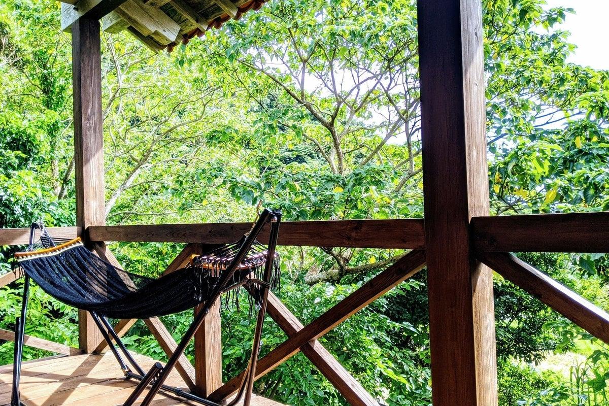 やんばるの森に佇む隠れ家スペース の写真