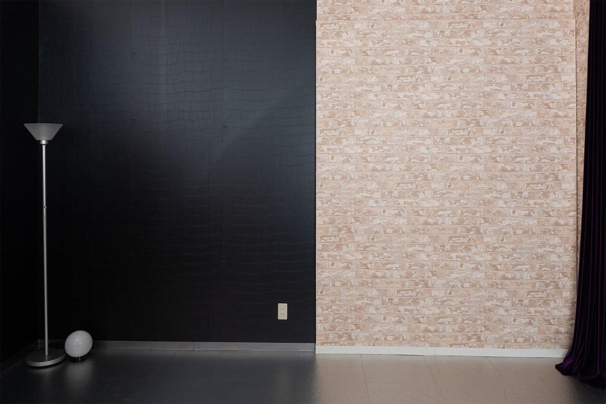 6面の違った壁面での撮影が可能です。ちょっと珍しいアルミの床のハウススタジオ。ベットも設置してあります。 の写真