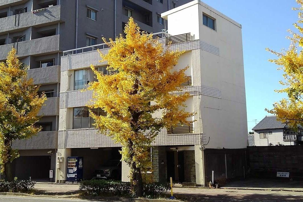 銀杏並木の美しい堀川通に面したお寺の本堂が見えるレンタルスペース の写真
