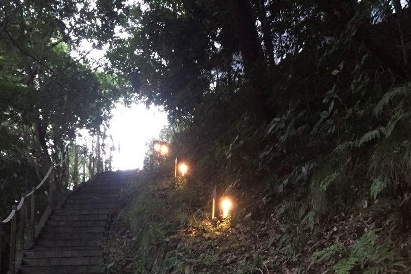 【鎌倉・極楽寺】リアルにキャンプを楽しみたいけどテント泊が嫌だという人のためのTTMAフォレストルーム の写真