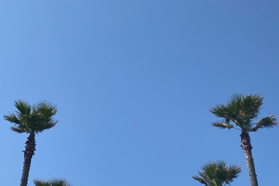 【フレックス藤沢鵠沼】即予約可能・光回線・除菌完備✨オンラインや会議に最適な閑静な住宅地🌿最大5名/ヨガマット有り の写真
