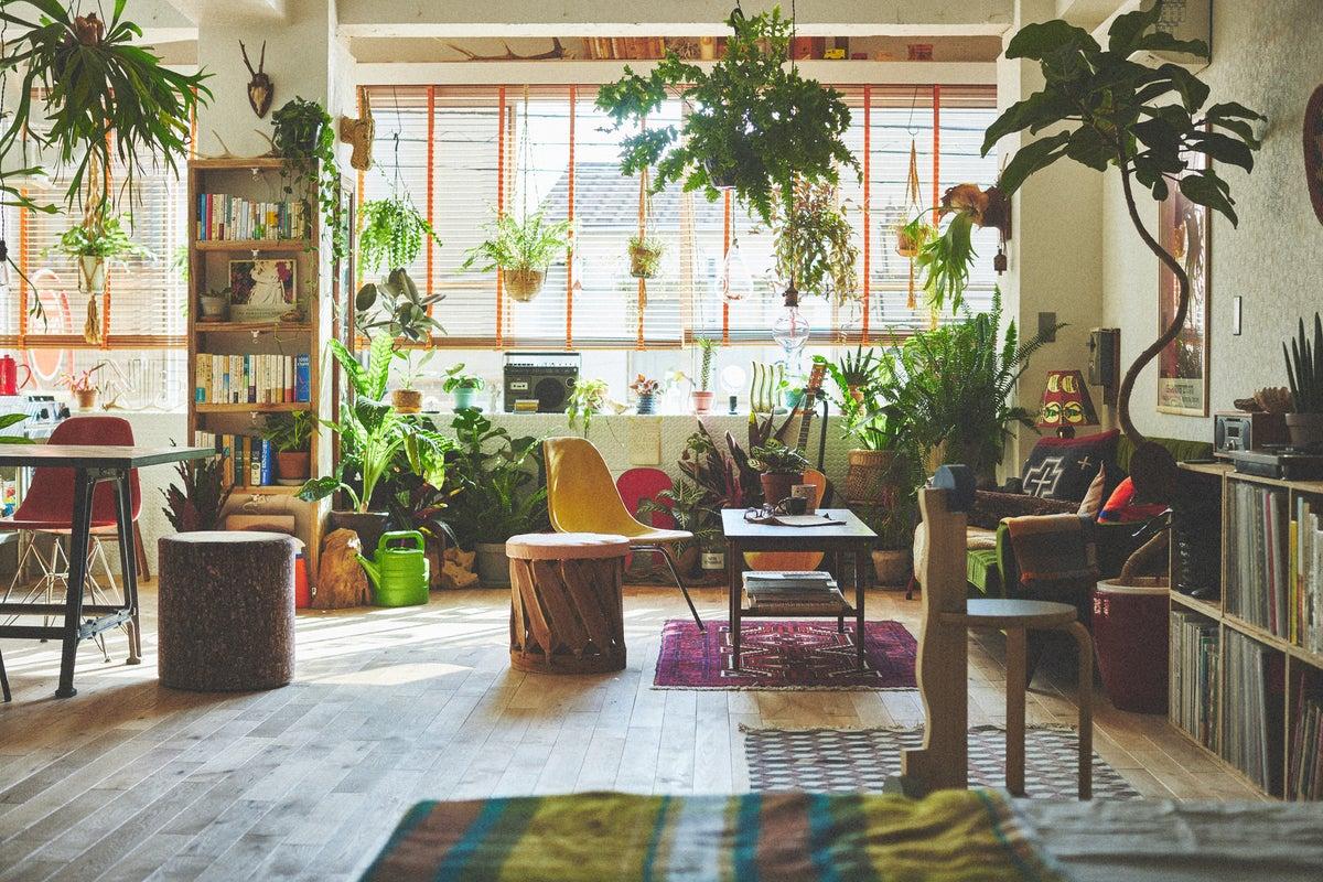 まるで実際に人が住んでいるかのようなリアル感と、それを包み込む圧巻の植物たち【PLEASE GREEN】 の写真