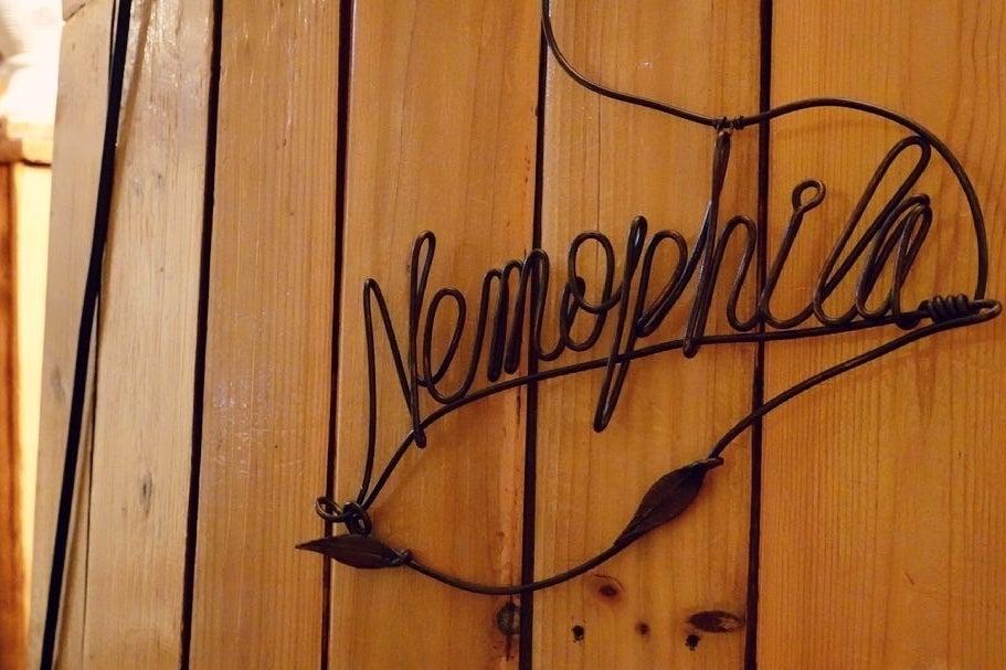 Nemophilaアートスペース‼️🎨 🎸 ミーティングやイベント会場にぜひ‼️🎉 の写真